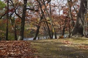 Five Island Park13