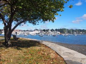 Harbor Island Par5