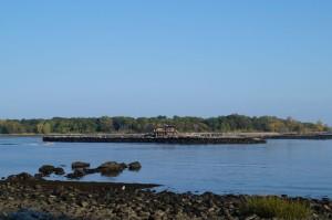 Glen Island Park7
