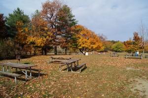 Five Island Park8