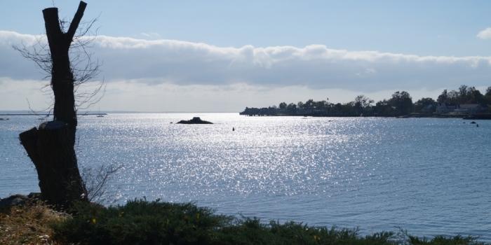 【Kosciuszko Park】 スタンフォードの海沿い公園