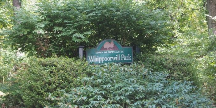 【Whippoorwill Park】 Chappaquaのハイキングコース