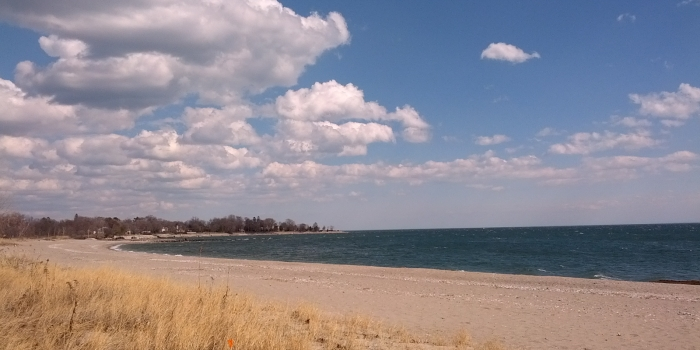 【Sherwood Island State Park】 Westportのビーチ