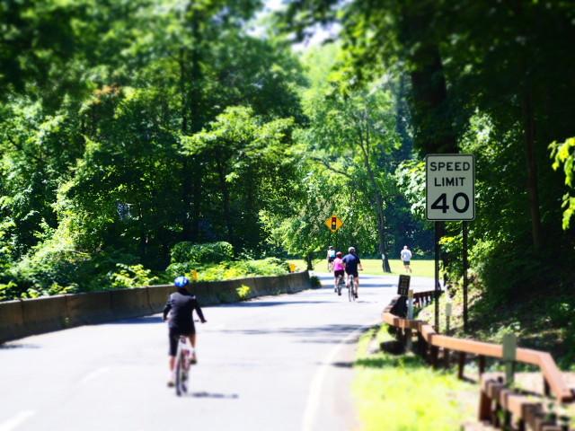 Bronxs River Park Way – Bicycle Sundays